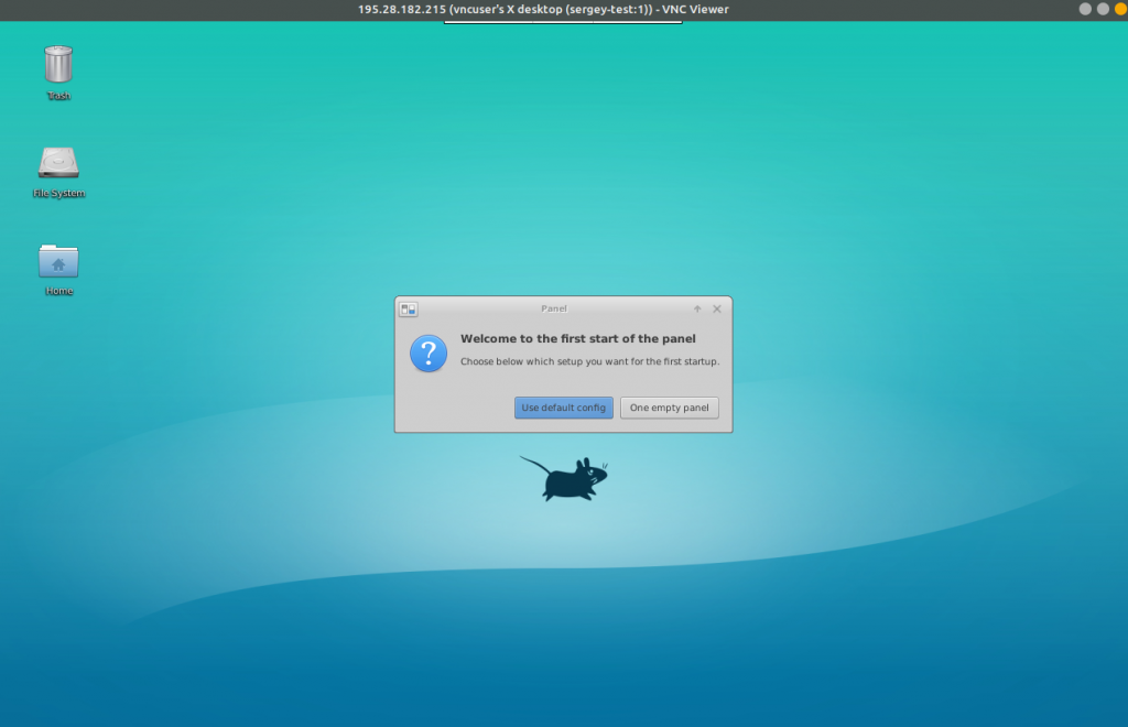 XFCE and VNC server prepared environment